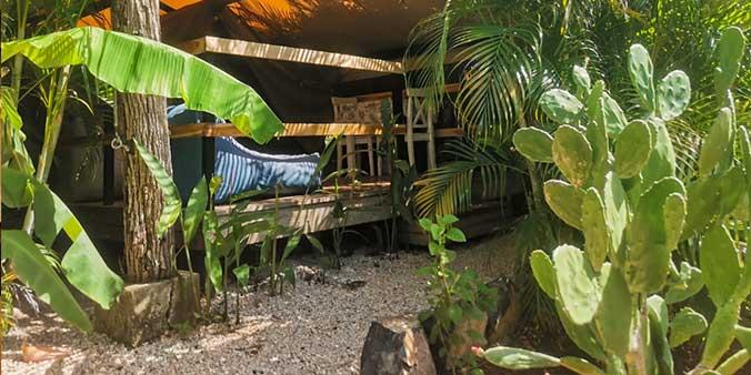 Jardines-flor-y-bambú